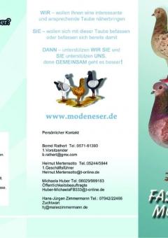 2000 Folder 6 Seiten Din lang Faszination Modeneser 135 g Bilderdruck1 Kopie